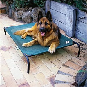 1.Coolaroo Elevated Pet Bed with Knitted Fabric