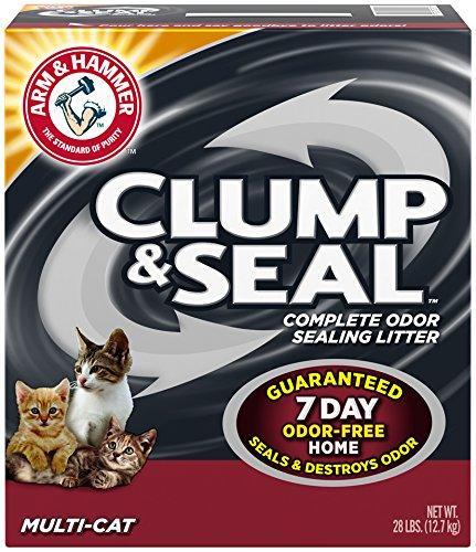 Best Cat Litters Review