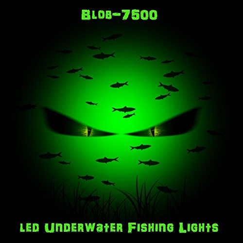 The Best Fishing Lights For Your Next Fishing Adventure