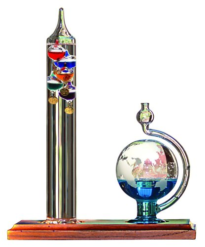 Top 10 Best Galileo Thermometers