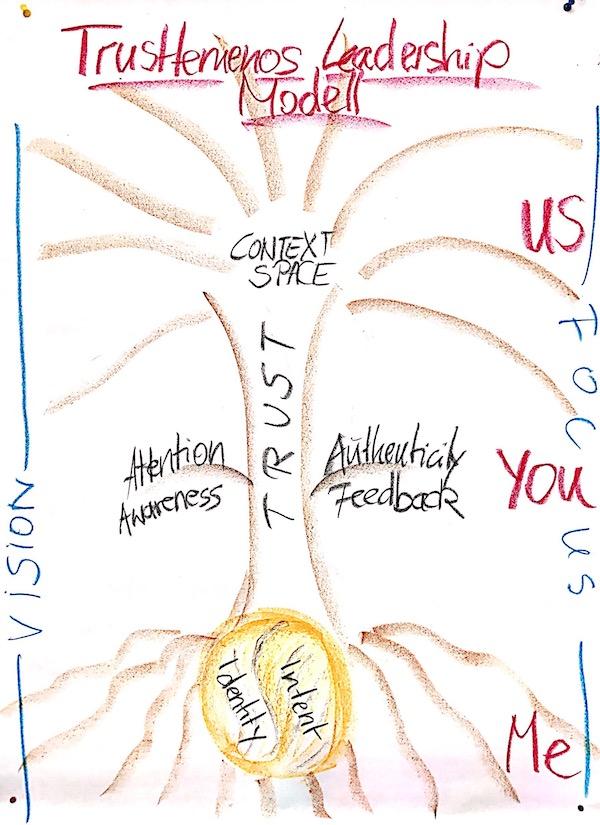 TrustTemenos Leadership Model