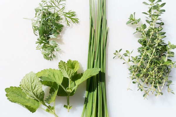 Fresh herbs for salad