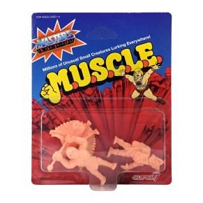 motu_muscle_wv2_c