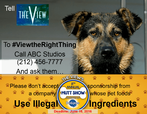 TheViewsAnnualMuttShow