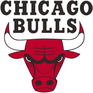 Current Bulls Logo