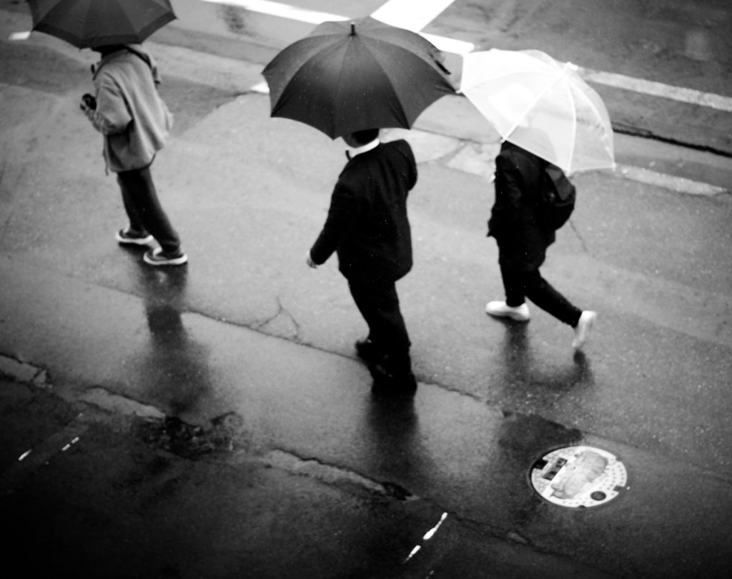 Turning Up at the Polls, Come Rain or Shine.      Does Weather Really Affect Voter Turnout?