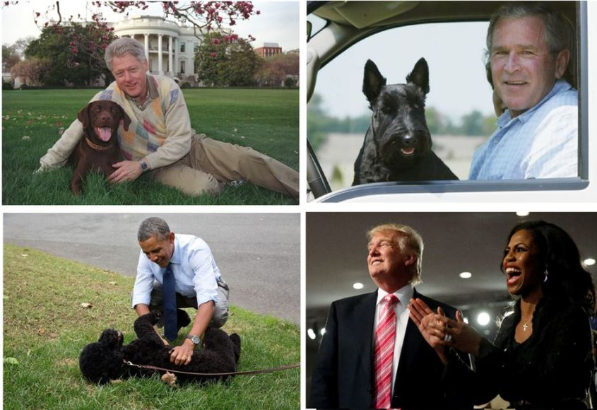 Dogs in the white house.JPG
