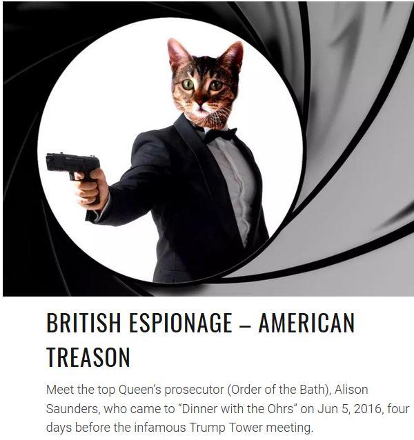 british spy cat
