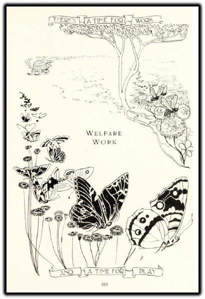 wellcome butterflies bees.jpg