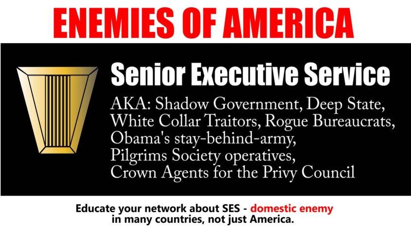 ses enemy senior executive