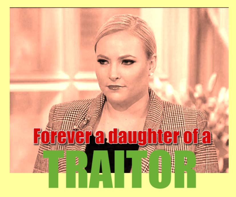 meghan mccain forever a daughter traitor