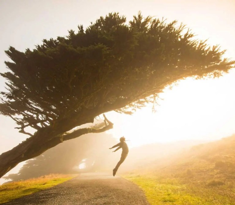 A woman jumps up in the air under a large tree