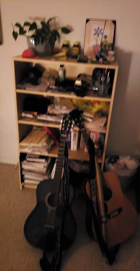 a little blue lachinga darla alicia brandon and bookcase