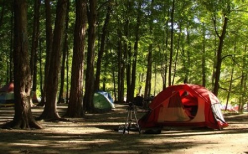 camping-family-400x249