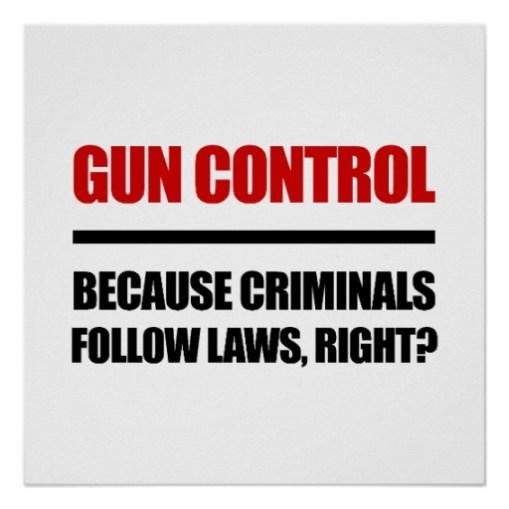anti_gun_control_posters-r22daedce22e946238f5befc1086f5063_wfb_8byvr_512
