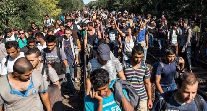 Clinton To Resettle One Million Muslim Migrants During First Term Alone (Video)