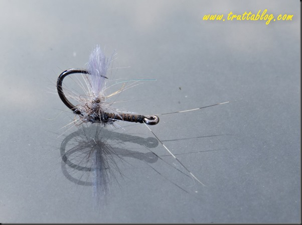 Reverse dry flies (1 of 1)-2
