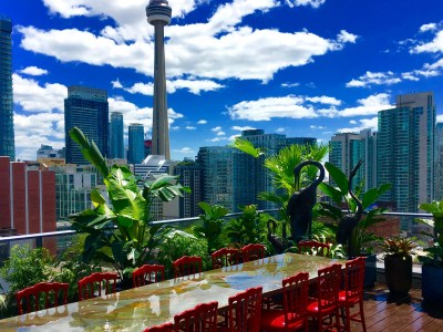 Roof top urban biophilic design In Toronto Canada By Biphilic designer Jeffrey Allis