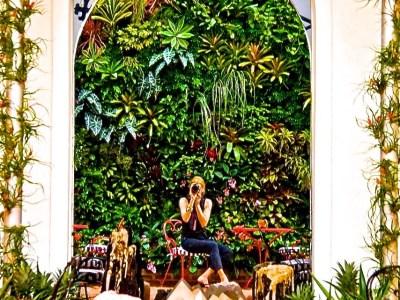 Vertical Green Wall Miami Florida | Chrome Hearts Miami design district Biophilic designer Jeffrey Allis delray beach Florida USA