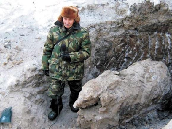 Основатель музея Петр Алексеевич Лазарев на раскопках Хромского мамонтенка (2008)