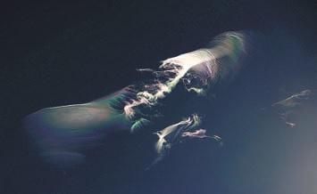 Иризация на перистых облаках. Фото О. Бартунова. Гималаи, 30 декабря 2012 года (www.flickr.com/ photos/obartunov/8407915495)
