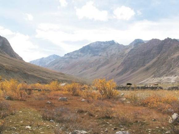 Окрестности деревни Муд. 7 октября 2011 года. Фото С. Литвинчука