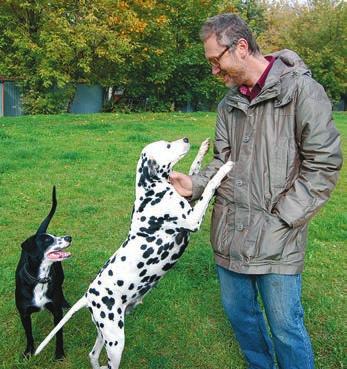 Е. Я. Парнес с любимой собакой. Осень 2012 года