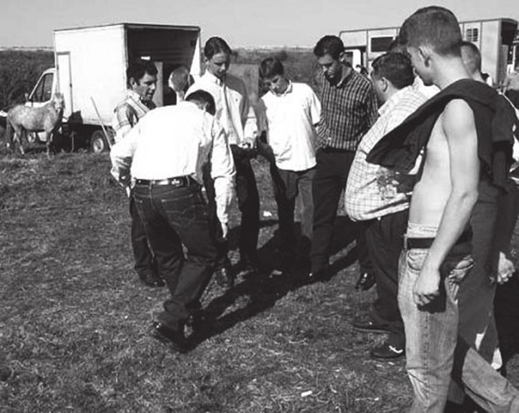 2. Британские цыгане играют в расшиши [4]