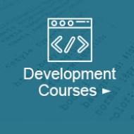 Development courses on udemy
