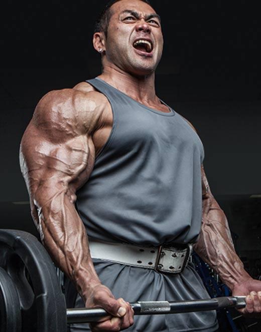 Mass + Muscle