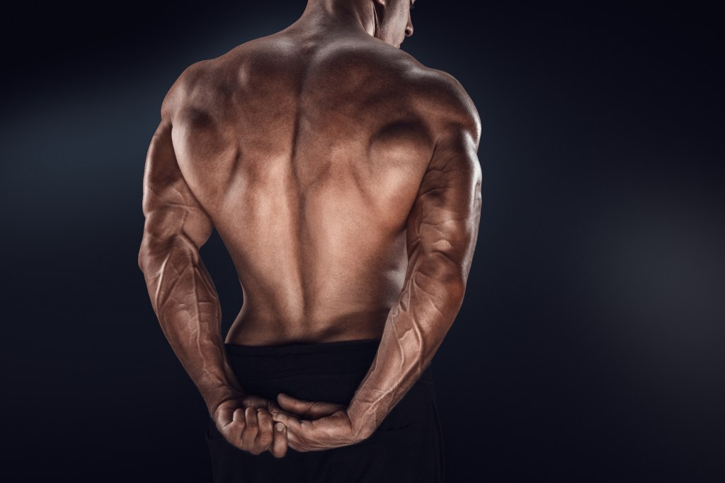 Our List Of The Ten Best Exercises For Your Back