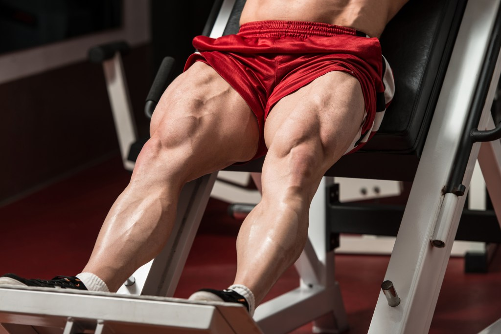 Building Bigger Quads – The 7 Best Quad Exercises To Take Leg Day To The Next Level