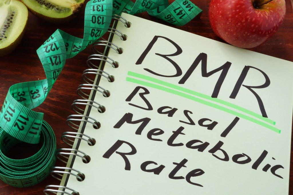 What Is Basal Metabolic Rate