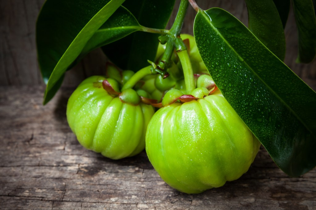 Does Garcinia Cambogia Really Help With Weight Loss