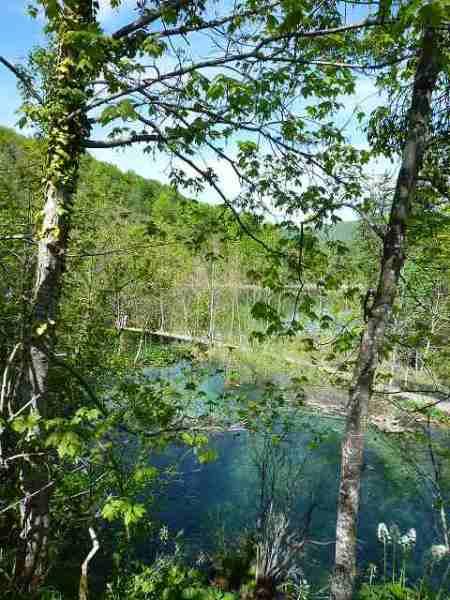 エメラルドグリーン色の湖:プリトヴィツェ国立公園