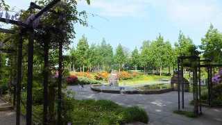 スイス、ベルンのローズガーデン(バラ公園)