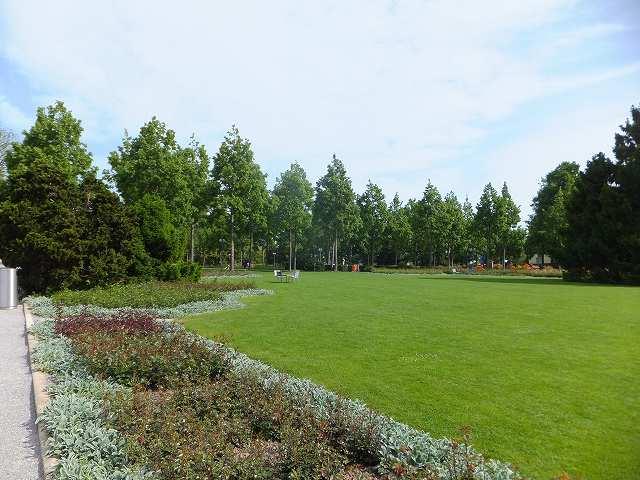 スイス:ベルンのローズガーデン(バラ公園)