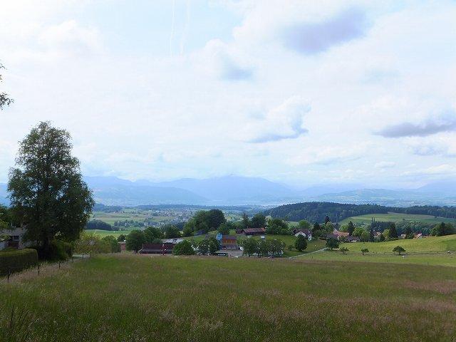 ウォーキングコースから望む村の景色:スイス