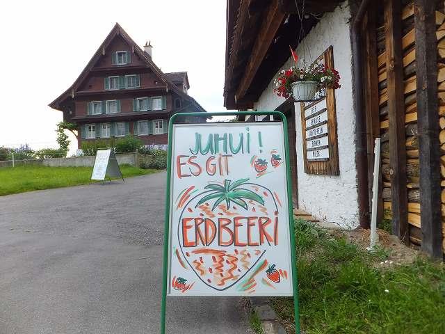 イチゴの個人販売:スイス、ツーク