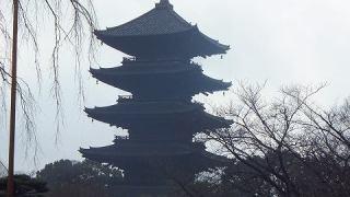 東寺「五重塔」の景色:京都