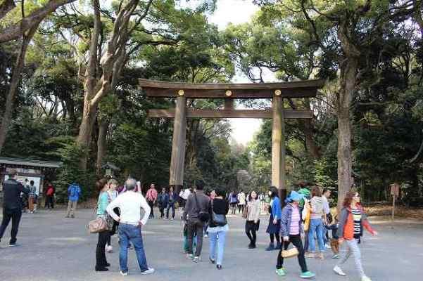 外国人の定番観光スポット?明治神宮