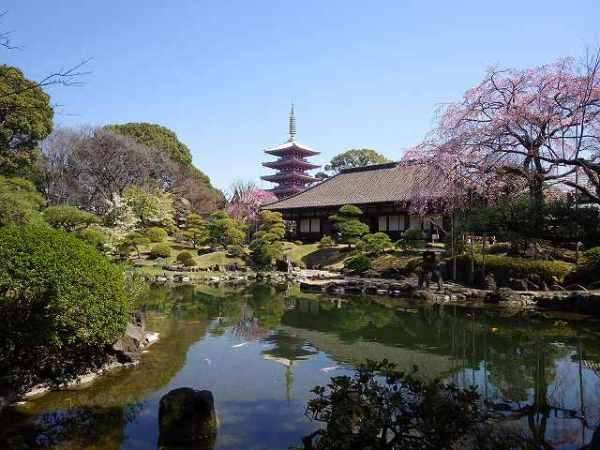 浅草寺:五重塔がある日本庭園