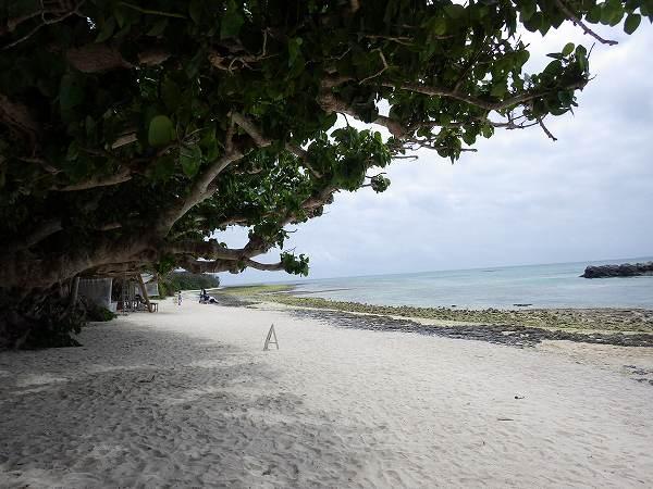 カイジ浜、木々で日陰が出来ていていい感じ♪