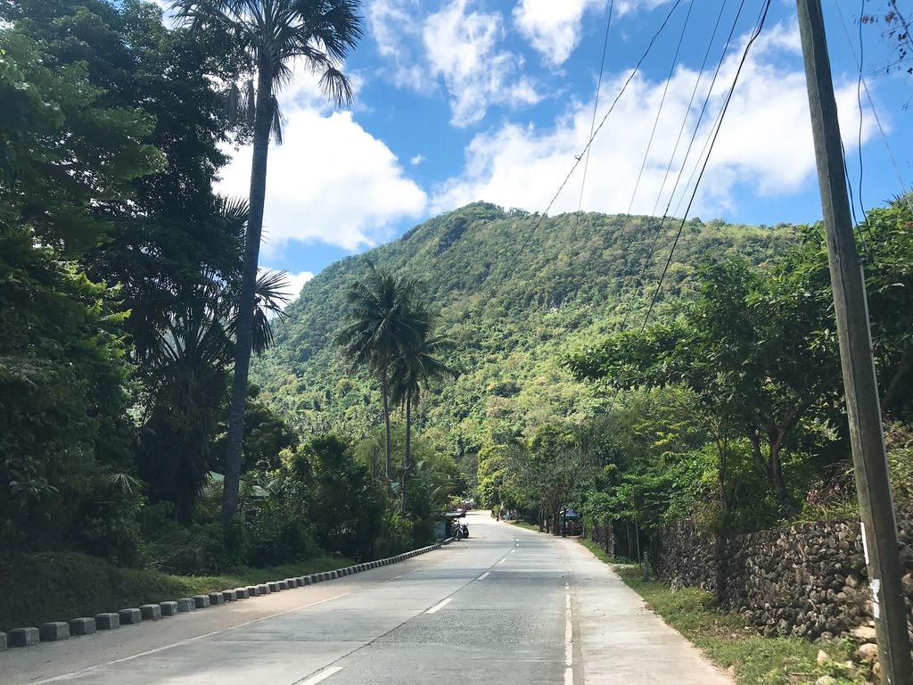 プエルトガレラの途中の道・自然豊かー!