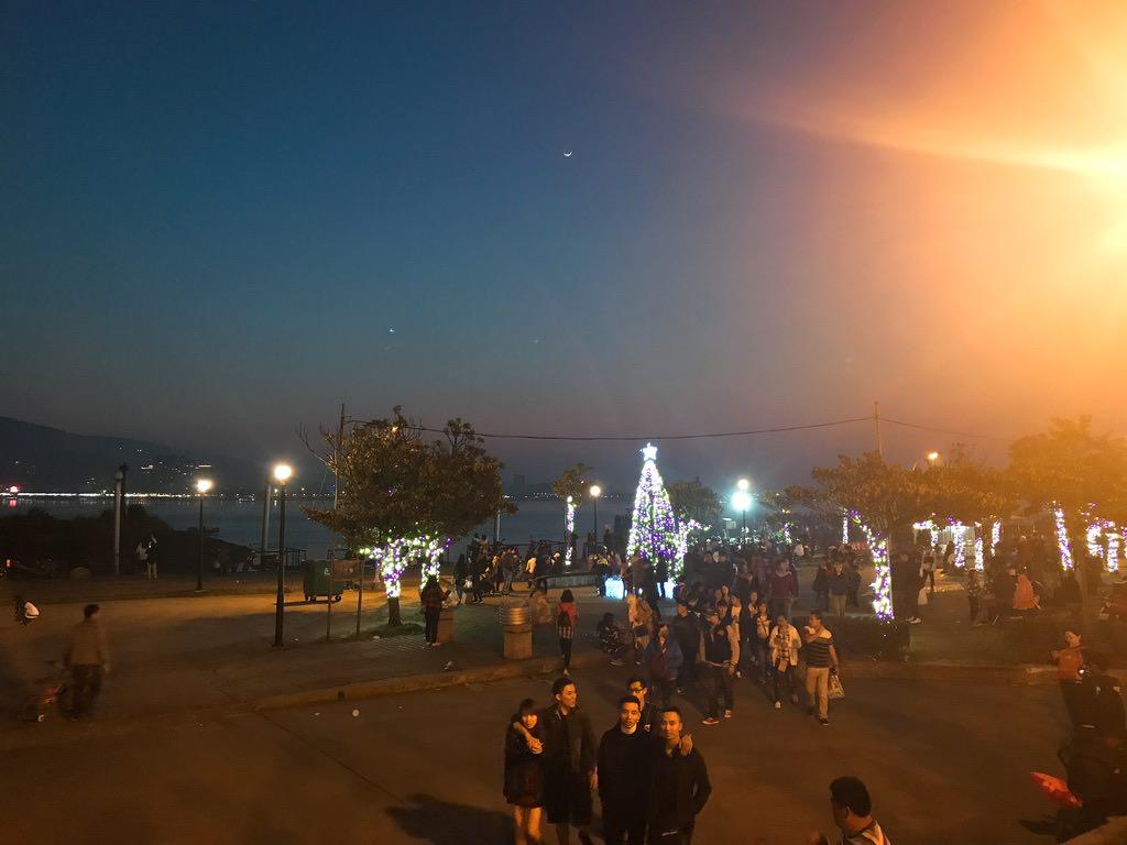 夜の淡水・なぜかクリスマスツリー