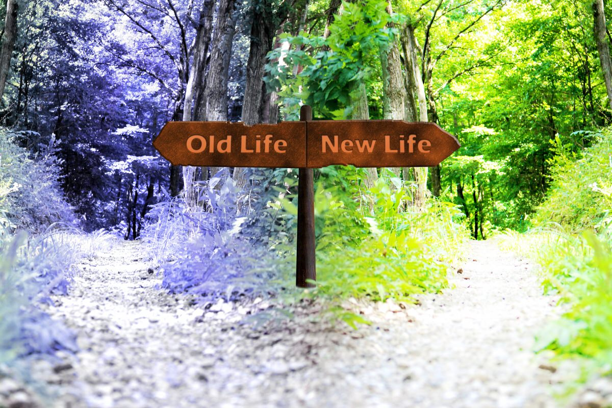 新しい世界へ!ワーホリ
