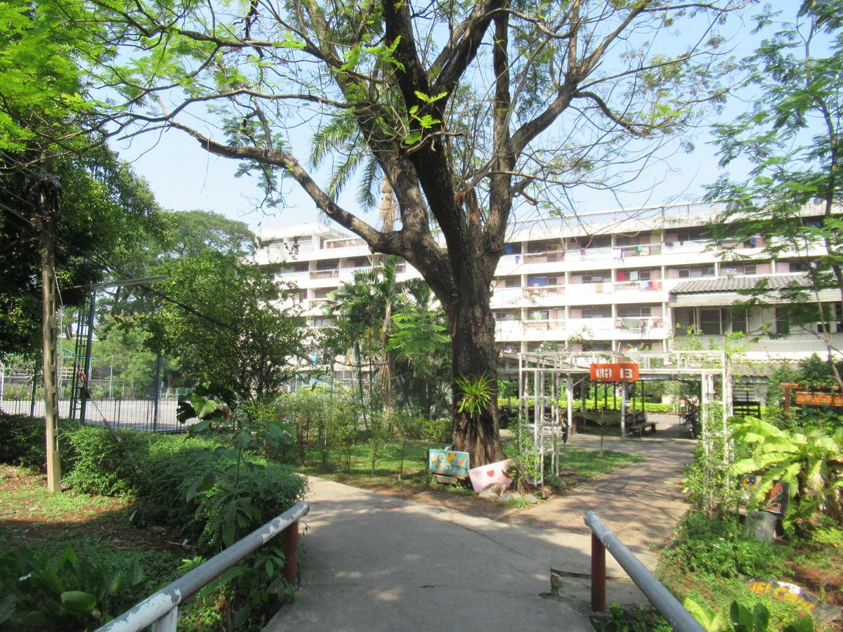 大学男子寮ドミトリー:カセサート大学校内の様子・雰囲気