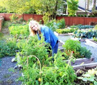 Smiling lady gardener in a community vegetable garden.