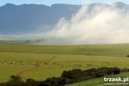 Gdzieś w drodze. Prowincja Przylądkowa Zachodnia Republika Południowej Afryki