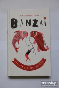 Zofia Fabjanowska-Micyk Banzai Japonia dla dociekliwych Dwie Siostry